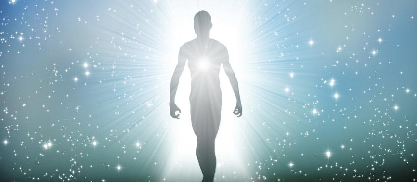 Člověk - anděl nebo člověk - zvíře?