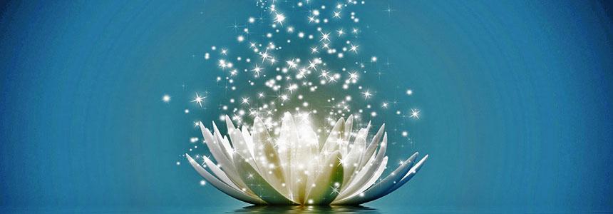 Meditace Lotosový květ probouzí Duši
