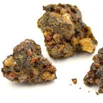 Borovice Himalájská - pryskyřice 20 g