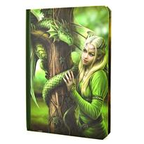 Kniha stínů - Lesní elfka a drak