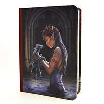 Kniha stínů - Vodní elfka a drak