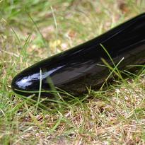 Masážní léčitelská hůlka Extra Obsidián černý