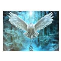 Obraz fantasy - Sněžná sova, Anne Stokes