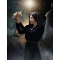 Přání - Čarodějka se sovou