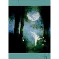 Přání - Magický prales