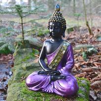 Buddha ve fialovém rouchu