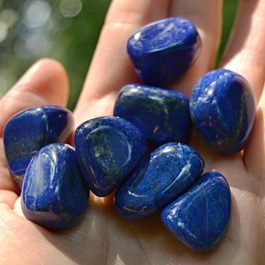 Lapis lazuli AA kvalita tamblovaný, velikost S - M  - 1