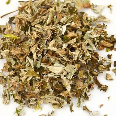 Sušené byliny sáček - Lišejník islandský 100 g  - 1