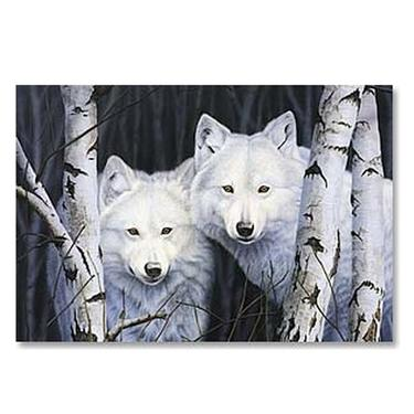 Magnetka - Bílí vlci