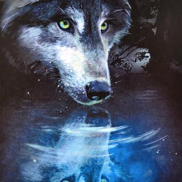 Magnetka - Vlk