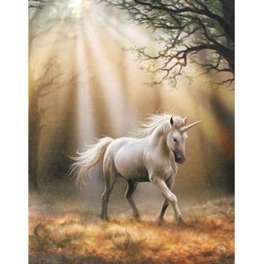 Obraz fantasy - Cestou jednorožce, Anne Stokes