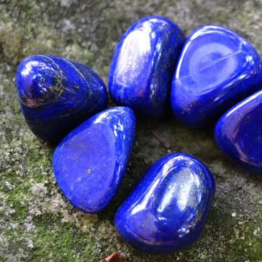 Lapis lazuli AA kvalita tamblovaný, velikost S - M  - 2