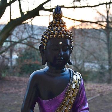 Buddha ve fialovém rouchu  - 3