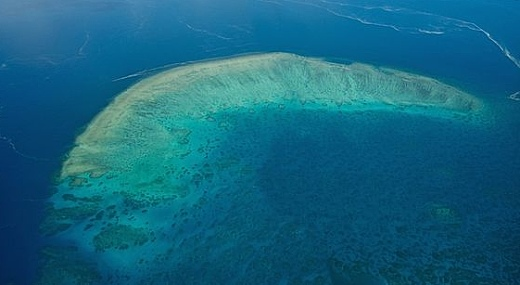 Korálový útes u Austrálie